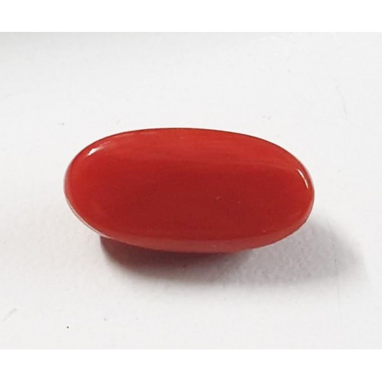 6.25ct Certified Natural Red Coral Japanese Moonga Oval Premium Quality